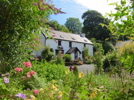 brynarth garden