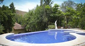 Source of wellbeing Malaga swimming pool