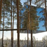 treehotel3