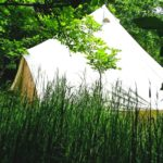 woodland escape tent2
