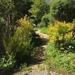 grange garden