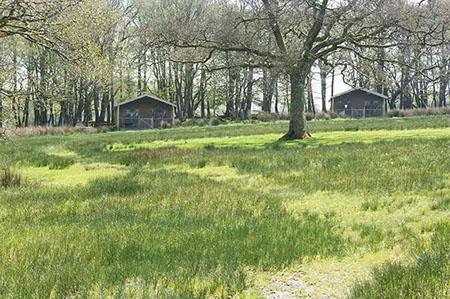 berridon farm grounds