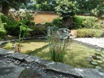 xidong cottage garden